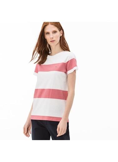Lacoste Tişört Renkli